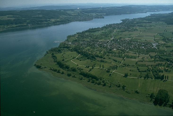 Blick auf den Bodensee von oben.