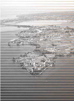 Blick auf den Bodensee in s/w mit Streifen durchzogen.